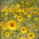 "Paul Bachem: ""Sunflowers, Cordova"""